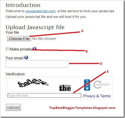 Easy Upload / Hosting File Javascript ( js) Quick Loading For