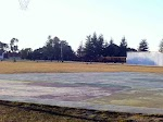 cricket ground.chail.jpg