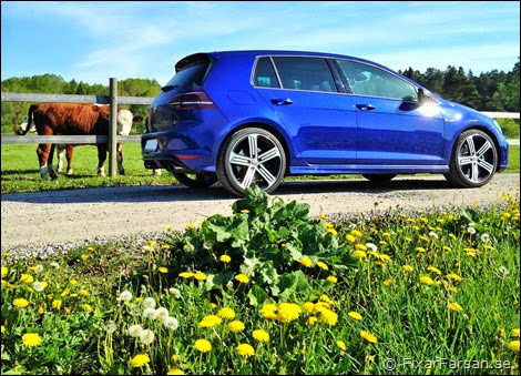 Review-Golf-R-2014
