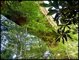 11b - Natural Bridge Overhead