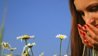 stock-footage-woman-admiring-daisies-in-a-field-close-up-admiring-flowers