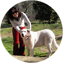 Immagine del profilo di Floriana Di Francesco