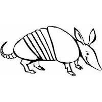 Armadillos Dibujos De Animales Para Colorear