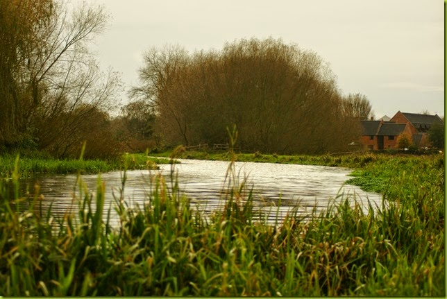 Walk along the river Bure, Buxton to Oxnead towards Aylesham