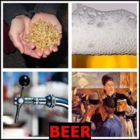 BEER- Whats The Word Answers
