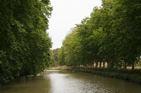 Cruising the canal du midi