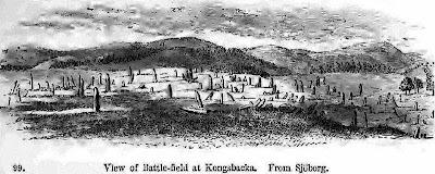 поле менгиров это частокол из тонких длинных камней, торчащих из земли, каменный лес