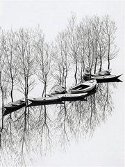Toni Schneiders - Flood at Lake Skutari, Yugoslavia - 1971