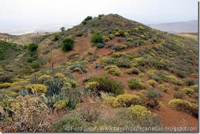 5833 Pico las Nieves-Temisas