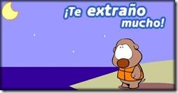 te extrao (5)