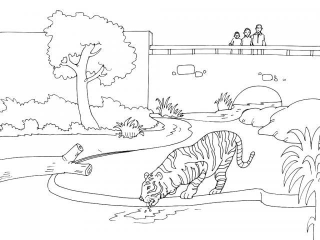 Dorable Zoológico Para Colorear Páginas Para Imprimir Motivo - Ideas ...