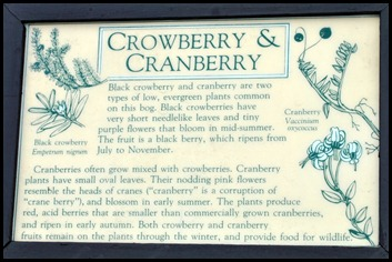 04w8 - Hike - Cranberry Sign