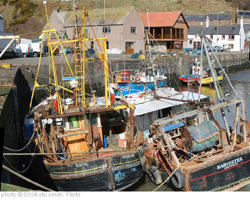 'Gourdon Harbour: fishing boats' photo (c) 2008, stu smith - license: http://creativecommons.org/licenses/by-nd/2.0/
