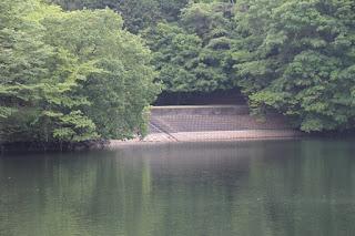 天端より右岸にある脇ダムと斜樋式取水設備を望む