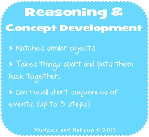 Preschool Reasoning and Concept Development