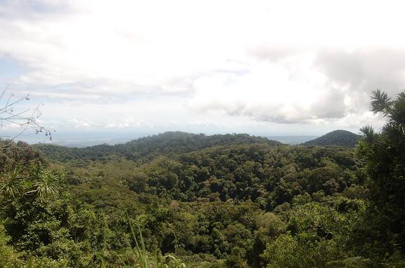 Madagascar : la Montagne d'Ambre, au sud d'Antsiranana, 31 janvier 2011. Photo : T. Laugier