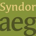 Syndor FlipFont icon