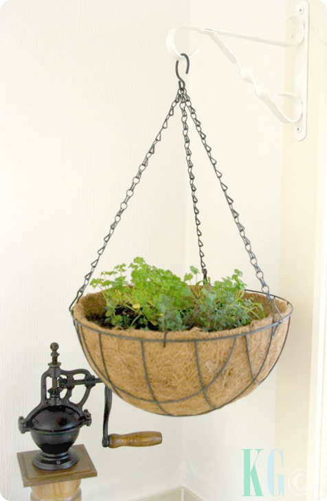 hanging kitchen planters herbs
