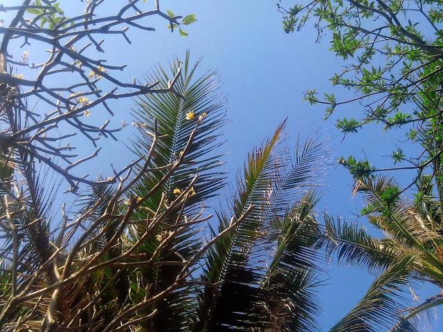 Вечное лето в Таиланде