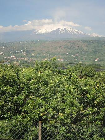 Imagini Sicilia: Etna Zapada si lamai