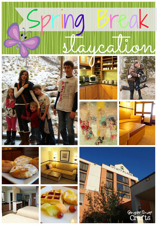 Hyatt Spring Break Staycation at GingerSnapCrafts.com #CBias #SocialFabric