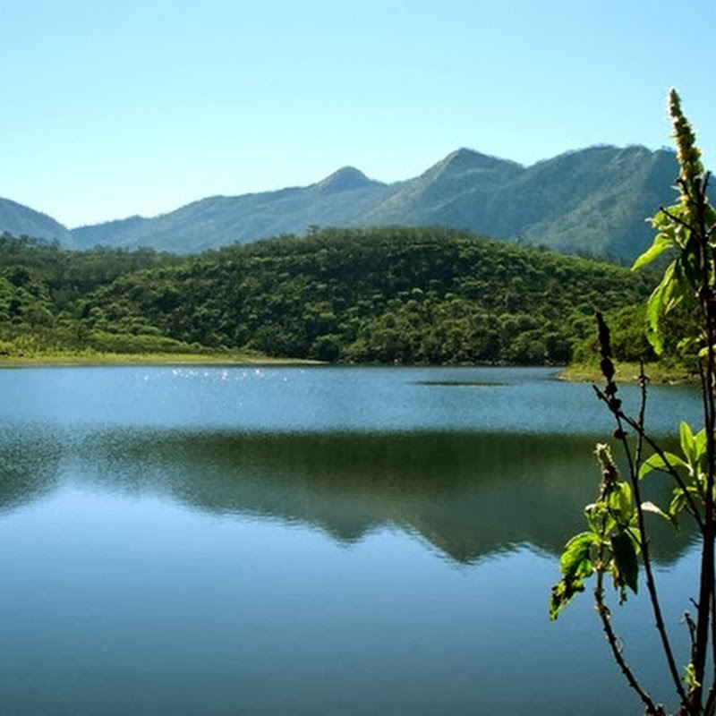 Lagunas de Yala, water mirrors in height with a stunning vegetation.