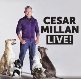 Cesar millan dating