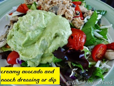 Creamy Avocado and Nooch Dressing or Dip