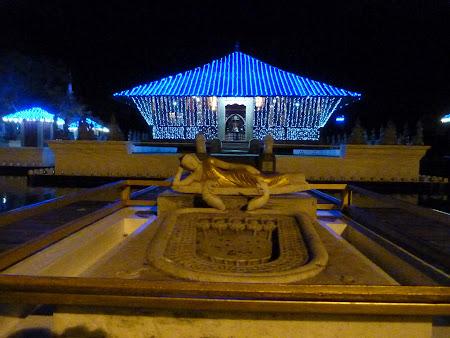 Templu budist Colombo, capitala Sri Lanka