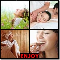 ENJOY- 4 Pics 1 Word Answers 3 Letters