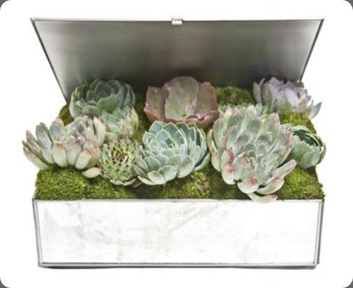 Joli Orchid Box IMG_2639_LowRes_450x450 floral art la