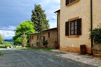 Castagno Castagnetta_Gambassi_10