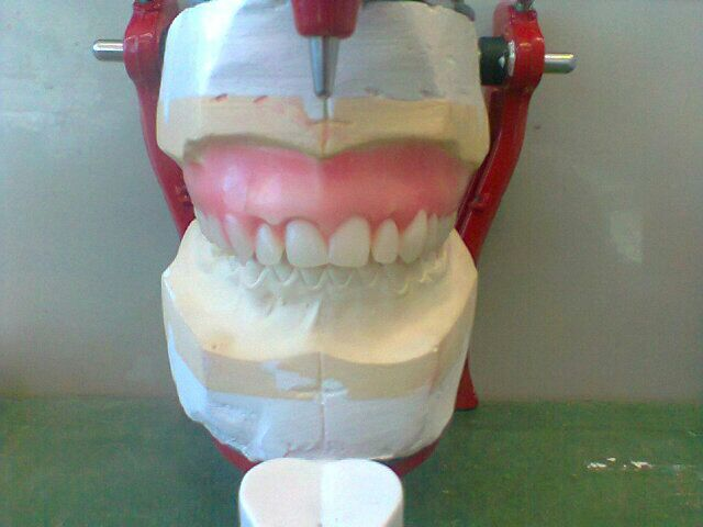Mrs D's Dental Technology space for student: JD Rex