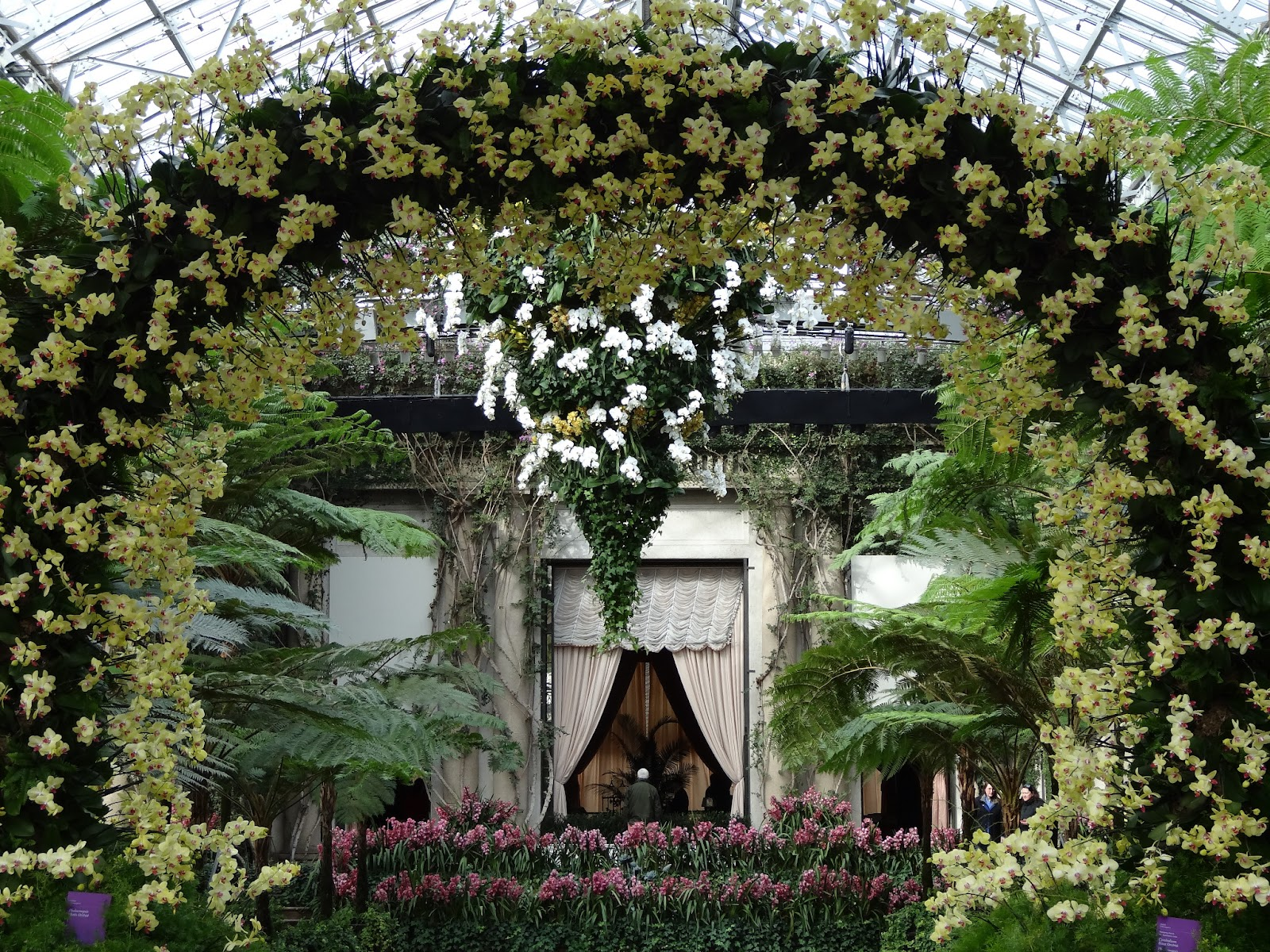 This Amazing Orchid Arch Looks Even More Impressive In Person. I Suspect It  Is Over Twenty Feet High. Behind It You Can See Another Huge Orchid Display  ...