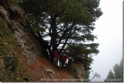 6854 Barranco Andén-Cueva Corcho(Barranco Crespo)