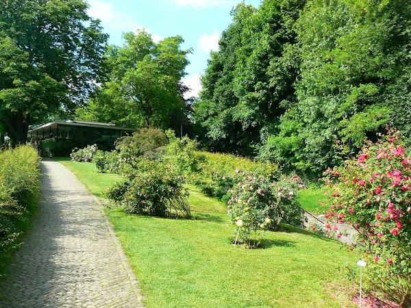 Obiective turistice Elvetia: Rosengarten.JPG