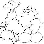 gallina pollo huevos.jpg