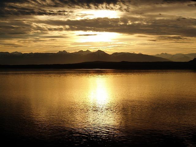 Dawn in the river.jpg
