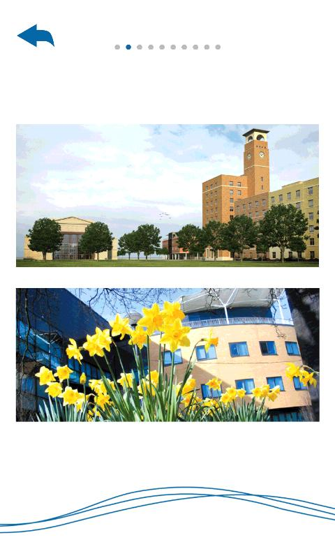 Swansea university research strategy