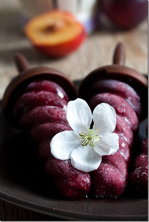 Plum sorbet with red wine