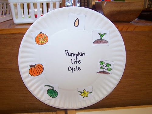 Pumpkin lifecycle from My Montessori Journey