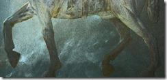 sf_horse_zampe