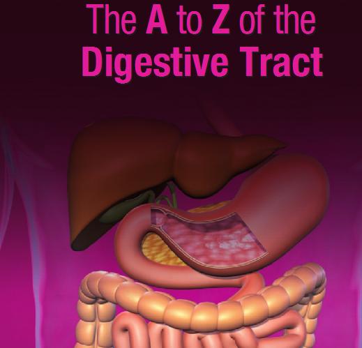 Иллюстрированный Атлас пищеварительной системы
