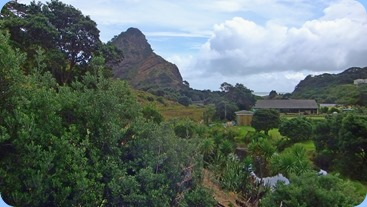 Views of Piha from the deck. Photo courtesy of Dennis Lyons.