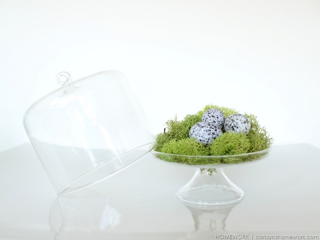 Moss and Fern Spring Decor via homework | carolynshomework.com