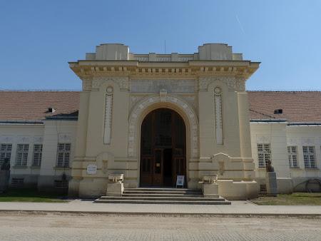 Imagini Romania: Sala Unirii Alba Iulia