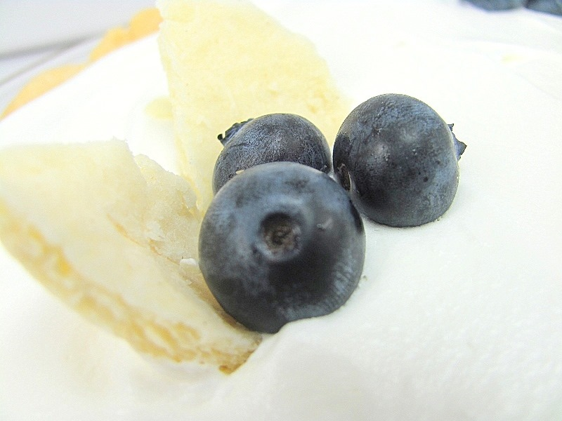 [blueberries%255B10%255D.jpg]