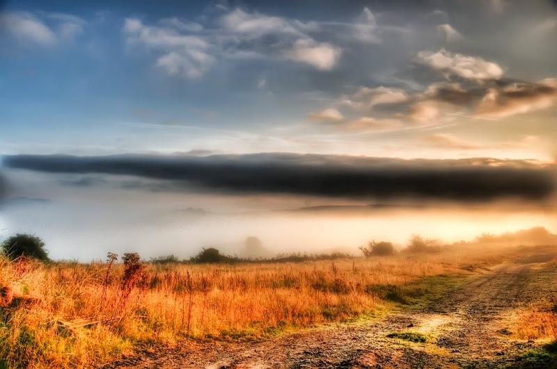 First Autumn Mists-Ron Bending.jpg