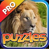 African Safari Puzzles Pro