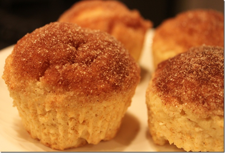 French Breakfast Muffins 014